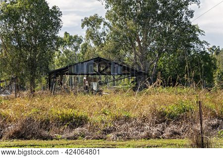 The Remnants Of An Old Broken Down Country Shed With Just The Frame Remaining Standing Amongst Bushl