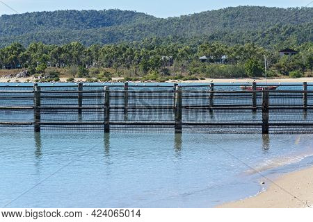 Seagulls Perched On A Wire Netting Swimming Enclosure On The Beach To Ensure The Safety Of Swimmers