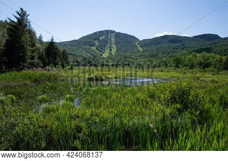 Beautiful  And Wild River And The Mountain In The Province Of Quebec, Canada