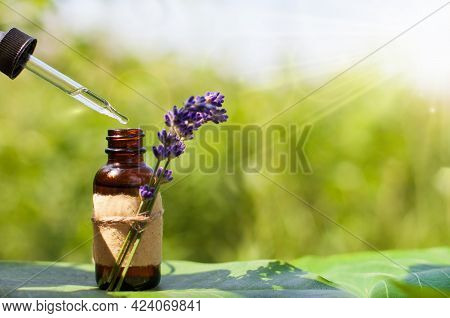 Lavender Essential Oil - Pipette Dropping Essential Oil Into A Glass Bottle. Copy Space.