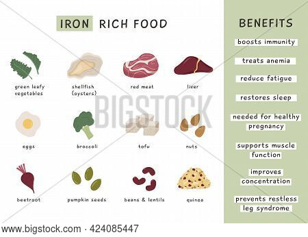 Iron Rich Food Sources And Benefits. Infographic Poster For Nutritionist. Dietetic Organic Nutrition