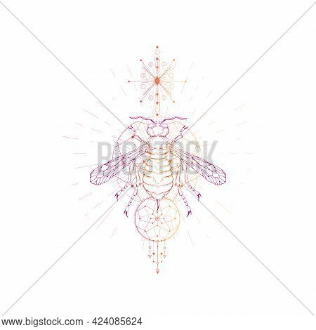 Vector Illustration With Hand Drawn Wasp And Sacred Geometric Symbol On White Background. Abstract M