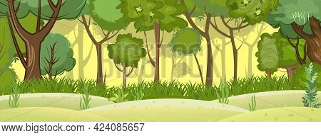 Summer Forest Landscape. Light Foggy Thickets. Dense Foliage. View Of Green Trees. Hills Meadow At T