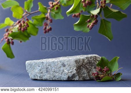 Minimalistic Scene Of A Lying Stone With A Branch And Berries On A Blue Background. Catwalk For The