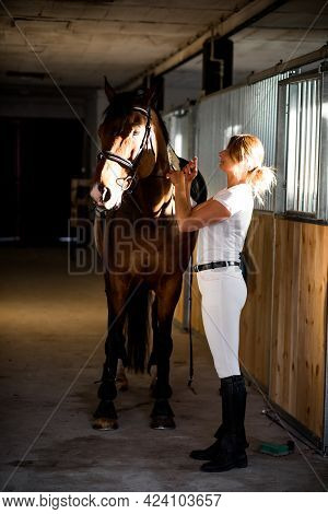 Young Athlete Takes Care Of Her Horse In Evening After Training. They Have Complete Mutual Understan