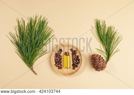 Herbal Medicine Layout With Essential Cedar Oil In Small Glass Bottle, Cedar Branches, Cone, Nuts On
