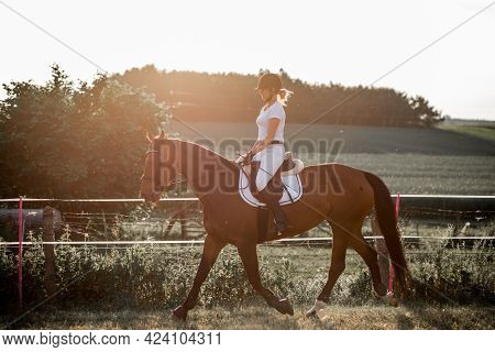Young Athlete Ridinghorse In Sunset. Horse Riding Training In Nature. Active Recreation. Sports And