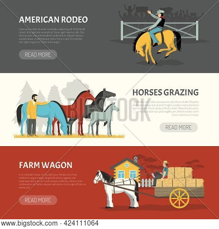 Information On Horses Breeds Handling 3 Horizontal Banners Webpage Design With Pasturing And Grazing