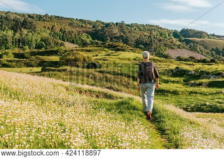 Elderly Woman Doing Low Intensity Exercise, Walking Through A Field With Flowers At Sunset. Active S