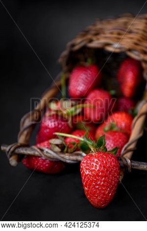 Ripe Red Strawberries Scattered From Wicker Basket, Dark Background, Close Up