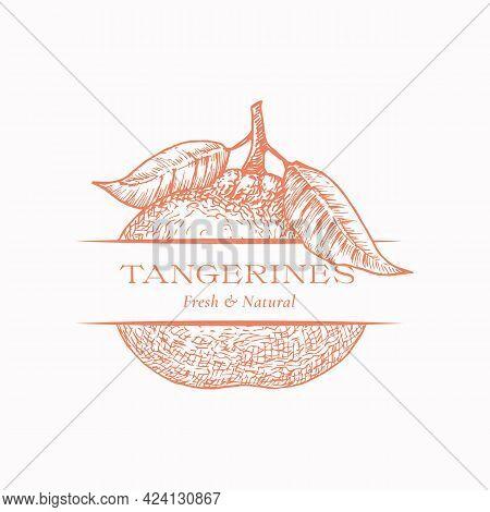 Fresh Tangerines Organic Fresh Citrus Abstract Vector Sign, Symbol Or Logo Template. Hand Drawn Tang