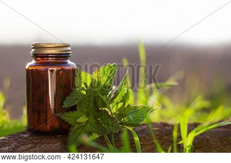 Herbal Medicine, Alternative Medicine And Homeopathy. Nettle Capsules