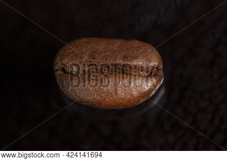 One Coffee Bean Close-up On A Black Background.