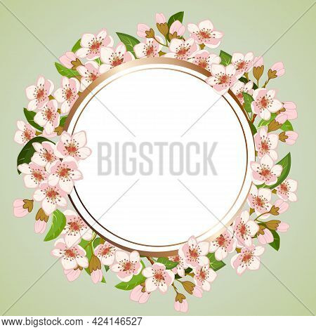 Frame With Blooming Sakura In The Illustration.frame With Blooming Sakura On A Colored Background In