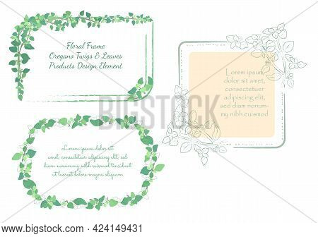 Set With Frames Made Of Hand Drawn Oregano Twigs. Culinary Herbs Outlined With Brushes And Colored L