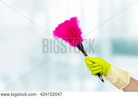 Spring Cleaning Concept. Hand With Soft Magenta Duster, Synthetic Feather Broom. Woman Hand Holding