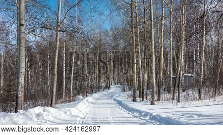 The Snow-covered Road Winds Through The Deciduous Forest. Snowdrifts On The Roadside. Bare Trunks An