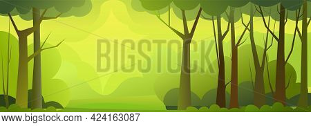 Forest Trees Vector. Dense Wild Plants With Tall, Branched Trunks. Foggy. Summer Green Landscape. Fl