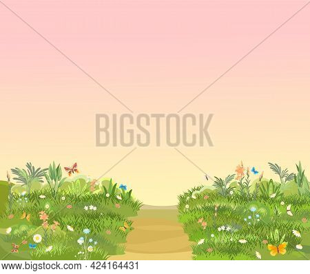 Rural Road To Green Glade. Summer Meadow. Morning Trail. Juicy Grass Close Up. Grassland. Country Tr