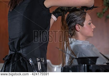 Professional Hairdresser Dyes Hair In The Hair Studio, Process Of Hair Colouring