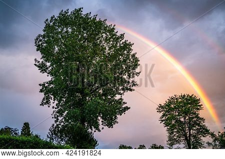 Double Colorful Rainbows Over Green Trees. Beauty In Nature. Tranquil Scene.