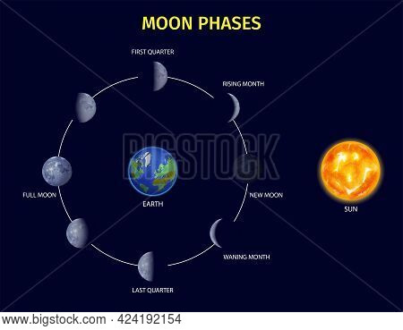 Moon Phases Realistic Infographic Set With Rising And New Moon Symbols Vector Illustration