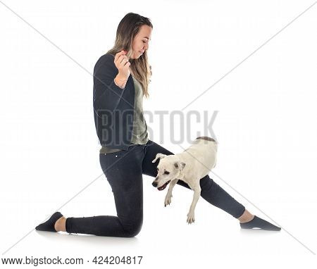 Jack Russel Terrier And Woman In Front Of White Background