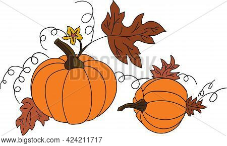 Two Vector Pumpkin On A White Background Isolated