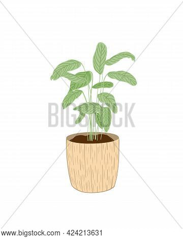 Green Leaves Homeplant In A Trendy Beige Clay Pot Isolated Hand Painted Image, Simple Scandinavian S