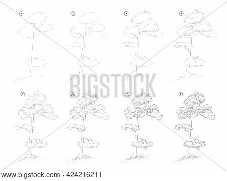 How To Draw Sketch Of Pine Tree. Creation Step By Step Pencil Drawing. Educational Page For Artists.