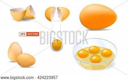 Set Of Realistic Shinny Chicken Eggs Isolated Or Chicken Egg Shell With Bright Style Or Break Egg Sh