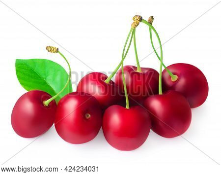 Red Cherry Isolated. Sour Cherry Macro. Sweet Cherries With Leaves On White Background.