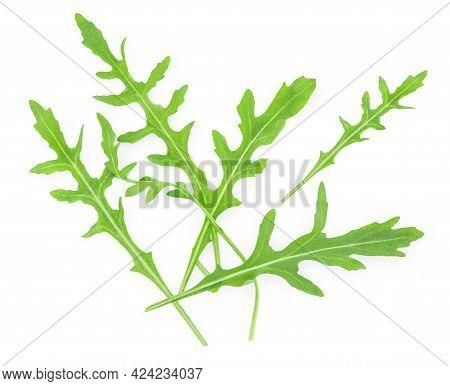 Rucola Leaves Isolated On White Background. Green Fresh  Rocket Salad Or Arugula Leaf, Top View. Fla