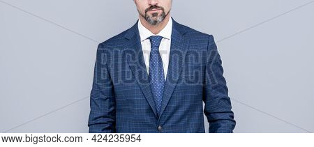 Cropped Ambitious Man Businessman In Businesslike Suit Has Grizzled Beard, Formal Fashion