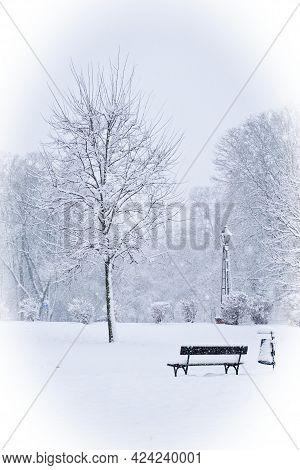 An Empty Snow-covered Park Bench Near A Tree On A Winter Day. Snow-covered City Park, Snowfall. Wint