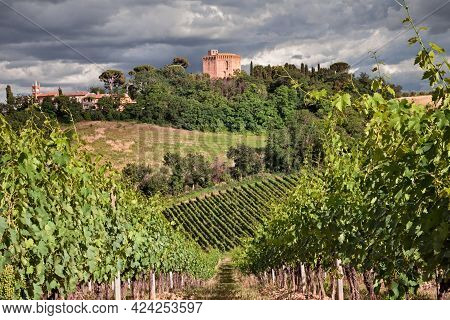 Faenza, Ravenna, Emilia Romagna, Italy: autumnal landscape at sunrise of the countryside with vineyards for wine production and the medieval tower of the village Oriolo dei Fichi