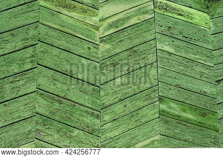 Abstract Textured Background Tree Bark Green Moss