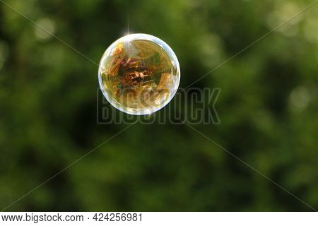 A Colorful Flying Bubble In The Garden