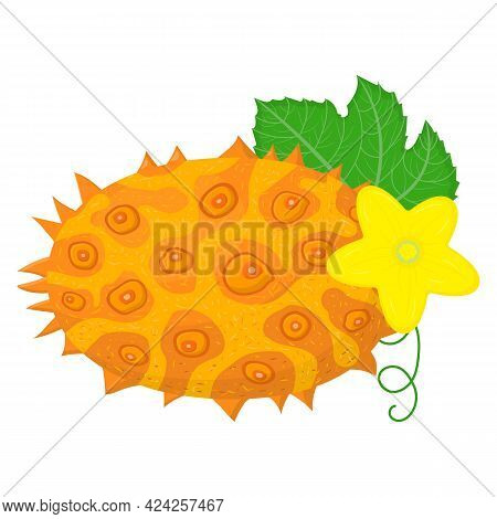 Fresh Whole Yellow Kiwano Fruit With Leaf And Flower Isolated On White Background. Summer Fruits For