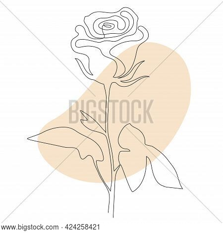 Rose Line Art - Beautiful Flower. Vector Illustration. Continuous Line Drawing. Abstract Minimal Flo