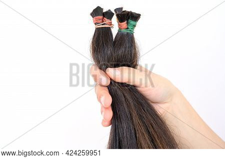 Close Up Of Someone Hand Holding A Ponytail Cutting Hair For Donation. Usable Hair Can Turn Your Lon