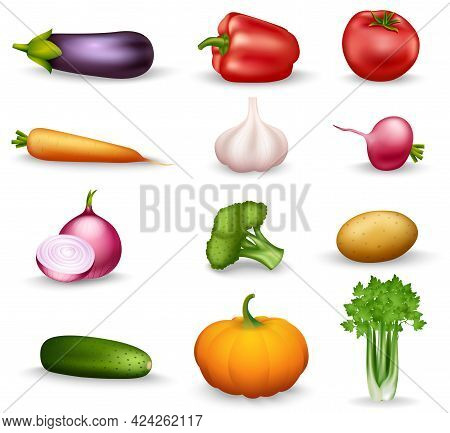 Realistic Vegetable Colorful Isolated Icons On White Background With Onion Radishes Broccoli Parsley