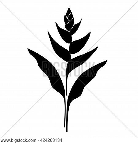 Silhouette Of A Tropical Exotic Flower Of Heliconia. Plant Symbol, Emblem On A White Background. Vec