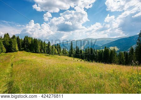 Carpathian Mountain Rural Landscape In Summer. Forest On The Grassy Meadow. Fields And Pastures On T