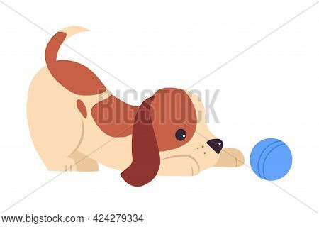 Cute Puppy Dog Playing With Ball, Adorable Pet Animal With White And Brown Coat Cartoon Vector Illus