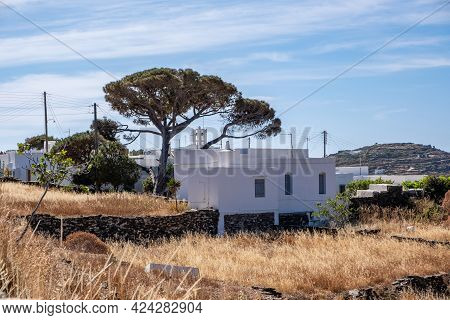 Grassland Dry Grass Summer Sunny Day At Sifnos Island, Cyclades, Greece. Greek Rural Landscape. Whit