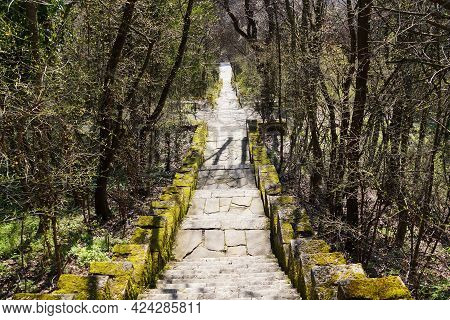A Stone Staircase, Overgrown With Moss, Leads Down In The Park.