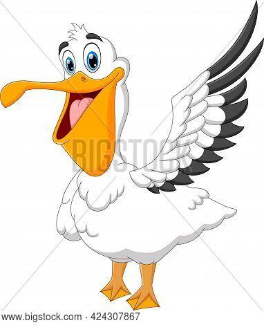Pelican Bird Cartoon Isolated On White Background