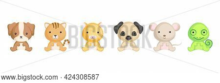 Cute Sitting Baby Animals In Cartoon Style. Collection Pet Animals Characters For Kids Cards, Baby S