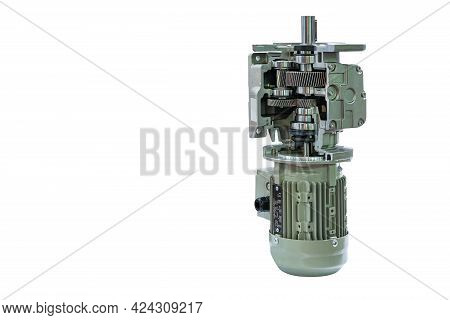 Cross Section Show Metal Cogs Helical Gear Bearing Housing Shaft And Detail Inside Of Transmissions
